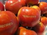 Hermes Apfel