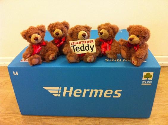 Paket-Teddy-20131119