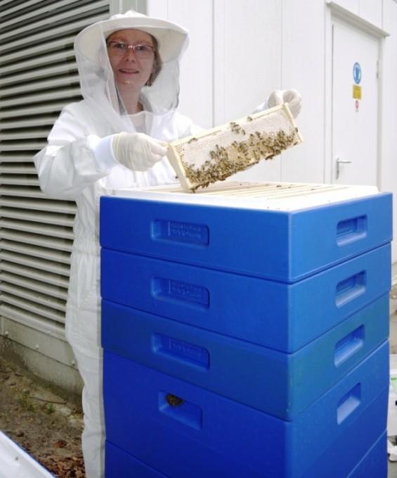 Edda Gebel mit ihrem Bienenvolk vor der Hermes Zentrale